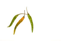 Three Chillies Stock Photos