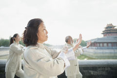 Three Chinese People Practicing Tai Ji, by the Canal Royalty Free Stock Image