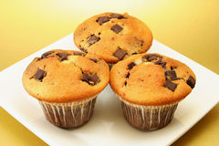 Three choc chip muffins. Three delicious choc chip muffins on a square plate with a golden background Stock Image
