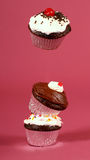Three chocolate cupcakes stacked with one floating. Three freshly baked chocolate cupcakes stacked on their edges with one floating above Stock Images