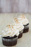 Three Chocolate Cupcakes With White Vanilla Frosting Row Royalty Free Stock Image