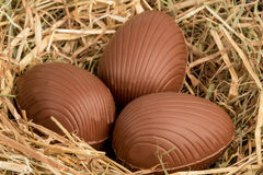 Chocolate easter eggs in straw Royalty Free Stock Photo