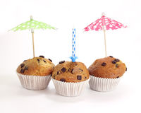 Three chocolate muffins with a candle. Isolated on white background royalty free stock photos