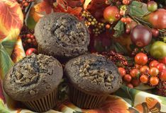Three Chocolate Muffins on Fall Background Stock Photography