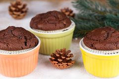 Three chocolate muffins with fir cones and twig Stock Images