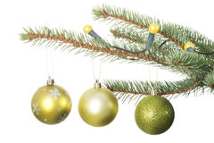 Three christmas balls hanging on a twig. Stock Photography