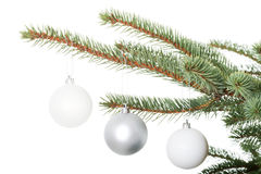 Three christmas balls hanging on a twig. Royalty Free Stock Photos