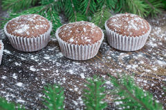 Three Christmas cakes, winter snowbound wooden background, fir t Royalty Free Stock Photography