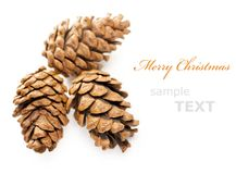 Three Christmas cones Royalty Free Stock Image
