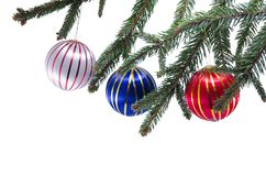 Three Christmas ornaments on a Christams tree Stock Images