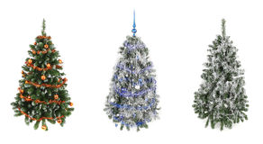 Three christmas trees Stock Image