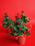 Three christmas trees. On red background Stock Photos
