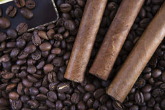 Three cigar on coffee beans. Close-up Royalty Free Stock Photography