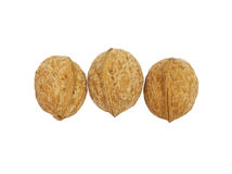 Three circassian walnuts Stock Images