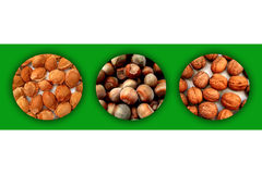 Three circles filled with apricot stones, hazelnuts and walnuts royalty free illustration