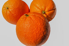 Three citrus fruit. Royalty Free Stock Images