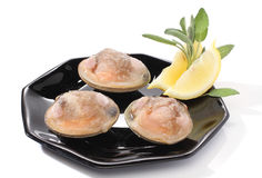 Three clams with lemon Stock Photos