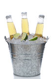 Three Clear Beer Bottles in Ice Bucket Royalty Free Stock Photo