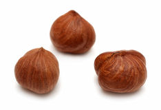 Three clear hazelnuts Royalty Free Stock Image