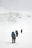 Three climbers on the glacier Stock Images