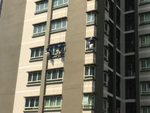 Three climbers maintenance windows and glass.  Stock Photo
