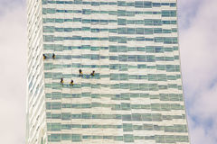 Three climbers wash windows and glass facade of the skyscraper Royalty Free Stock Images