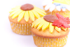 Three close up cupcakes Royalty Free Stock Images