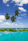 Three coconut palms by a  swimming pool. Three coconut palm trees by swimming pool side with beautiful background of blue sky with clouds Royalty Free Stock Image