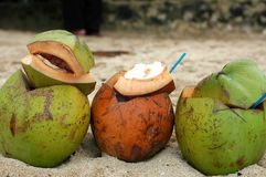 Three coconuts. Three opened coconuts, brown in the middle of two green coconuts Stock Images