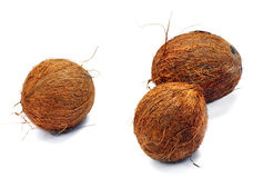 Three coconuts. On a white background. Isolated. A close up Stock Photos