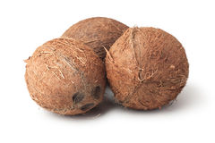 Three coconuts isolated on the white. Background Stock Image