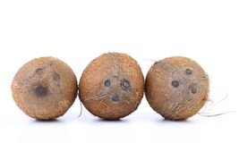Three coconuts isolated Stock Image