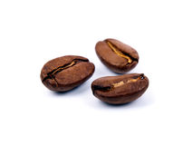 Three coffee beans Stock Image