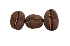Three coffee beans royalty free stock images