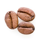 Three coffee beans Royalty Free Stock Photo