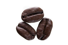 Three Coffee Beans Stock Image