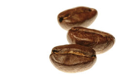 Three coffee beans Royalty Free Stock Photos