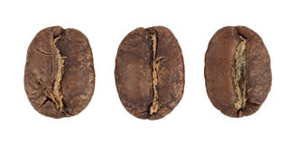 Three Coffee beans cutout Royalty Free Stock Images