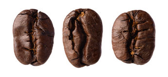 Three coffee beans Stock Photography