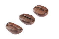 Three coffee grains Royalty Free Stock Photo