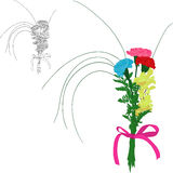 Three color carnations Stock Photo