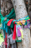 Three color of the clothes tie up the tree culture of thailand Royalty Free Stock Image