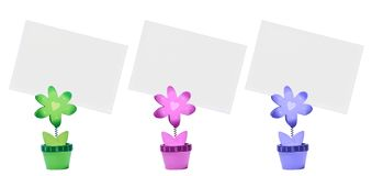 Three color flower and paper card Stock Photos