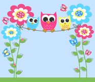 Three color ful owls Royalty Free Stock Image