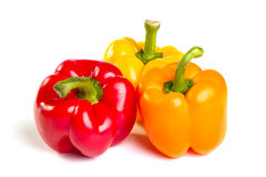 Three color peppers Royalty Free Stock Image