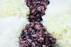 Three color sticky rice Stock Images