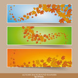 Three Colored Autumn Banners Colored Background Royalty Free Stock Images