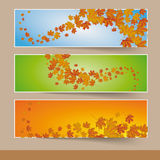 Three Colored Autumn Banners Stock Photos