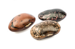 Three colored beans. On white background stock photography