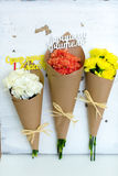 Three colored bouquet of carnations in paper cornet Royalty Free Stock Images